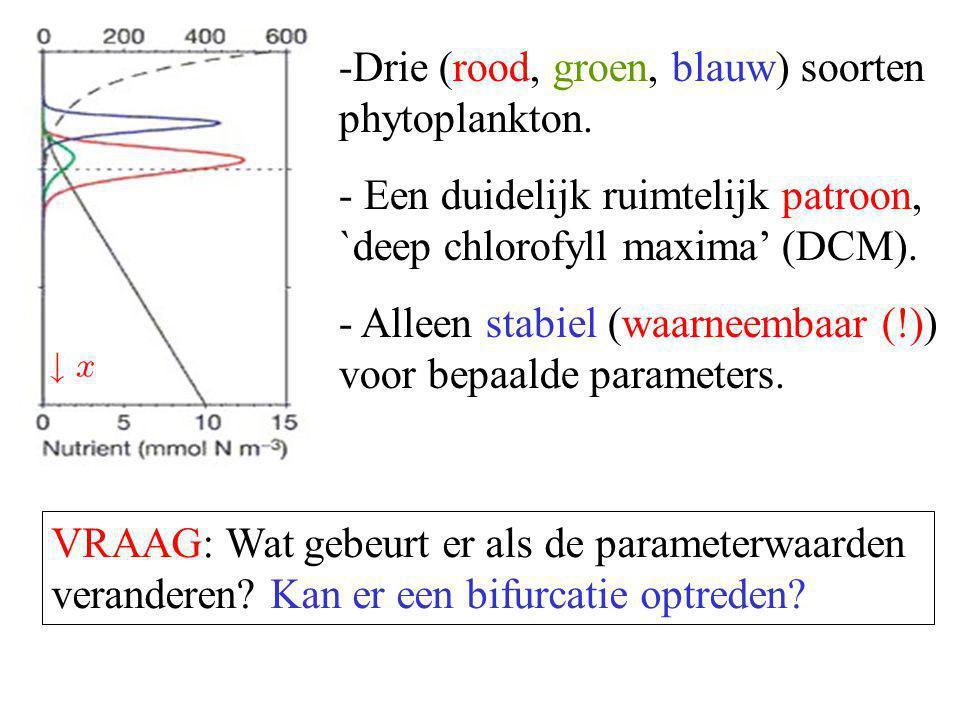 -Drie (rood, groen, blauw) soorten phytoplankton. - Een duidelijk ruimtelijk patroon, `deep chlorofyll maxima' (DCM). - Alleen stabiel (waarneembaar (