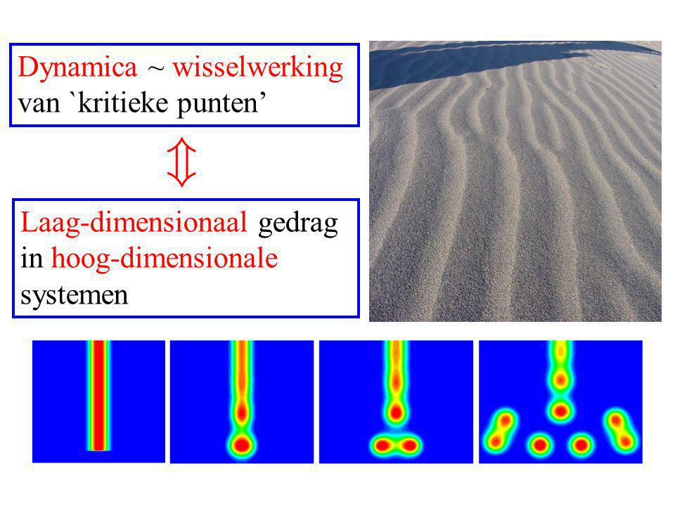 Dynamica ~ wisselwerking van `kritieke punten' Laag-dimensionaal gedrag in hoog-dimensionale systemen