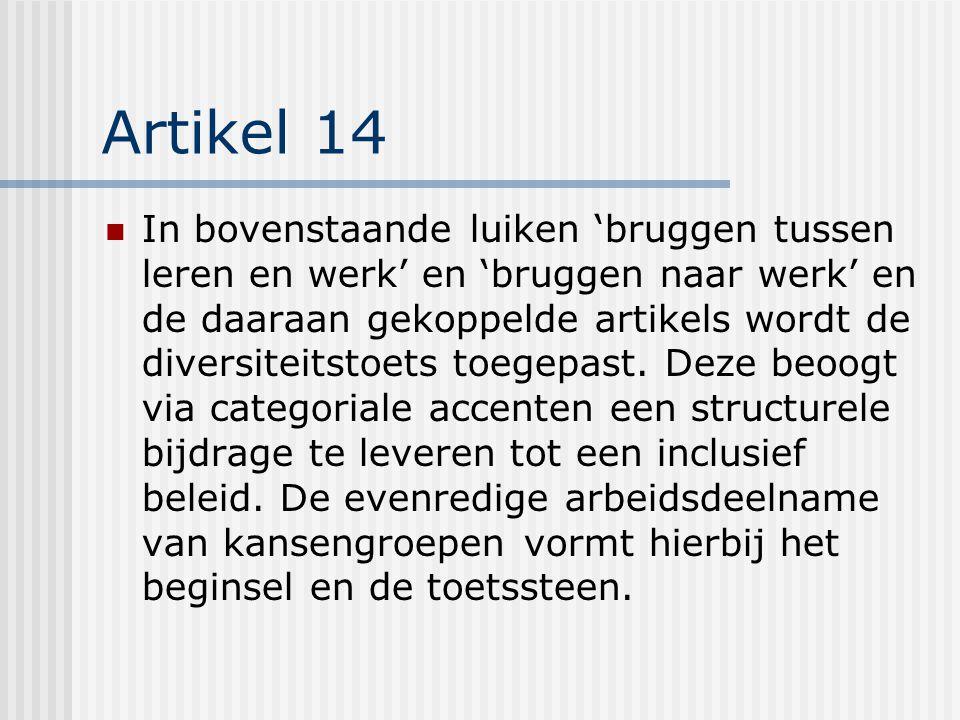 Artikel 14 In bovenstaande luiken 'bruggen tussen leren en werk' en 'bruggen naar werk' en de daaraan gekoppelde artikels wordt de diversiteitstoets toegepast.