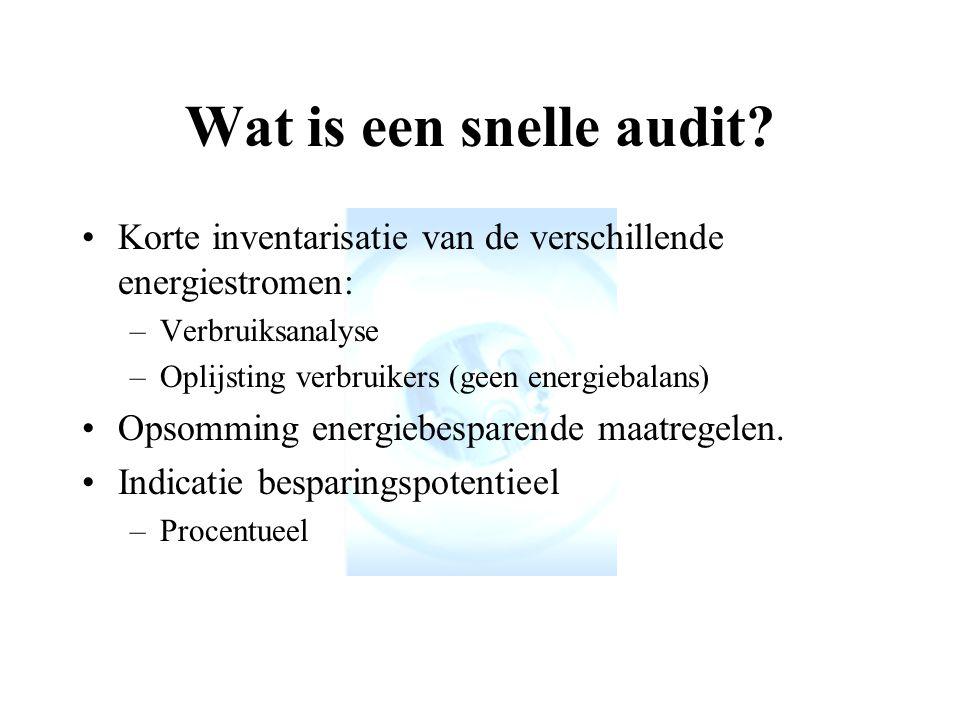 Wat is een snelle audit.