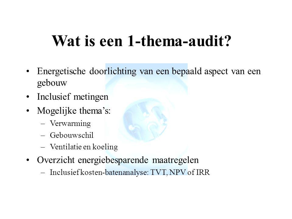 Wat is een 1-thema-audit.