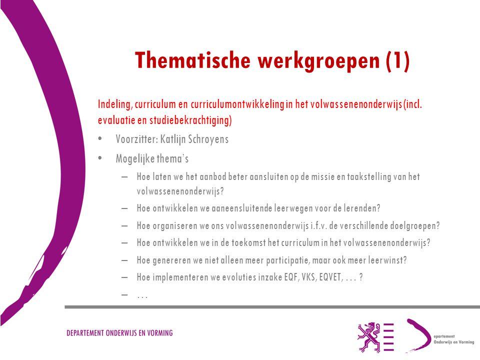 Thematische werkgroepen (1) Indeling, curriculum en curriculumontwikkeling in het volwassenenonderwijs (incl. evaluatie en studiebekrachtiging) Voorzi