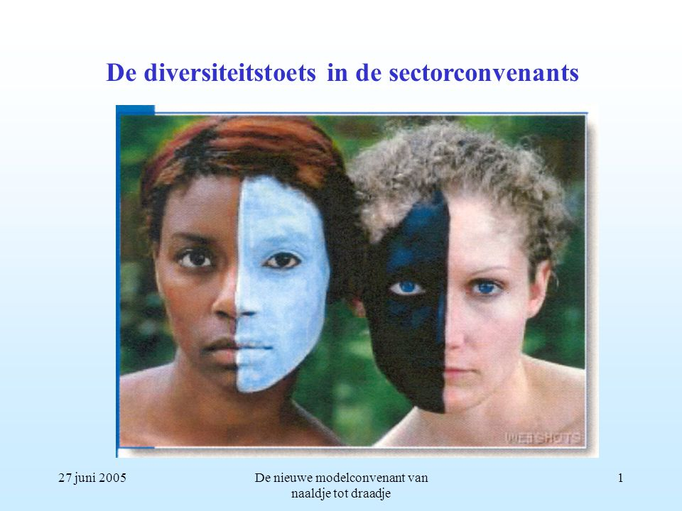 27 juni 2005De nieuwe modelconvenant van naaldje tot draadje 1 De diversiteitstoets in de sectorconvenants