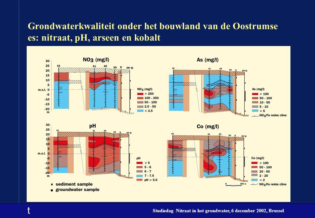 t Studiedag Nitraat in het grondwater, 6 december 2002, Brussel Grondwaterkwaliteit onder het bouwland van de Oostrumse es: nitraat, pH, arseen en kob