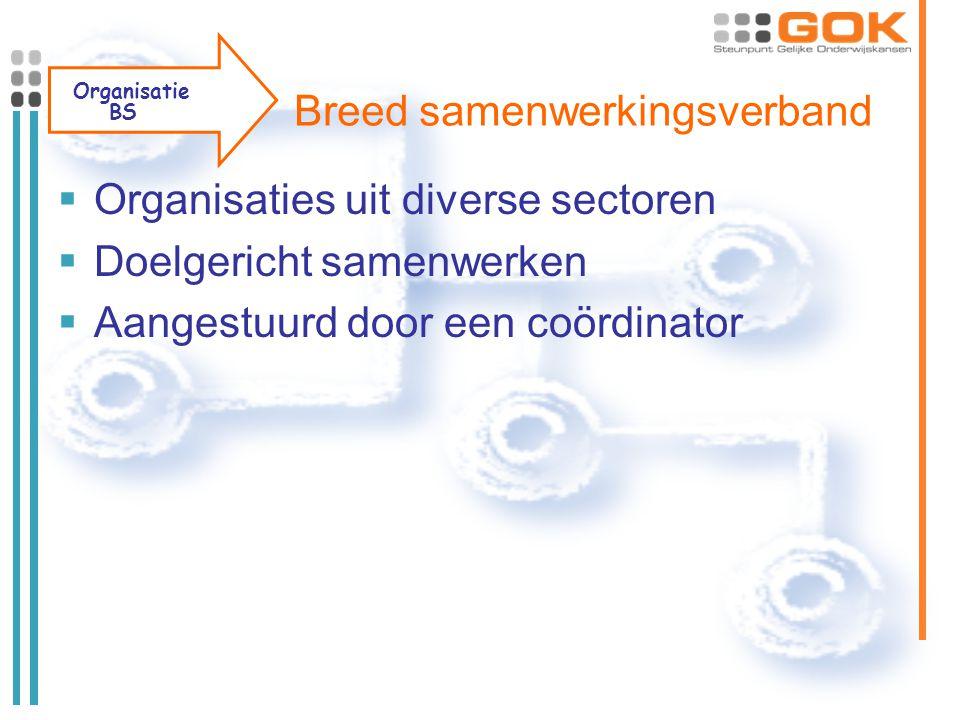 Breed samenwerkingsverband  Organisaties uit diverse sectoren  Doelgericht samenwerken  Aangestuurd door een coördinator Organisatie BS