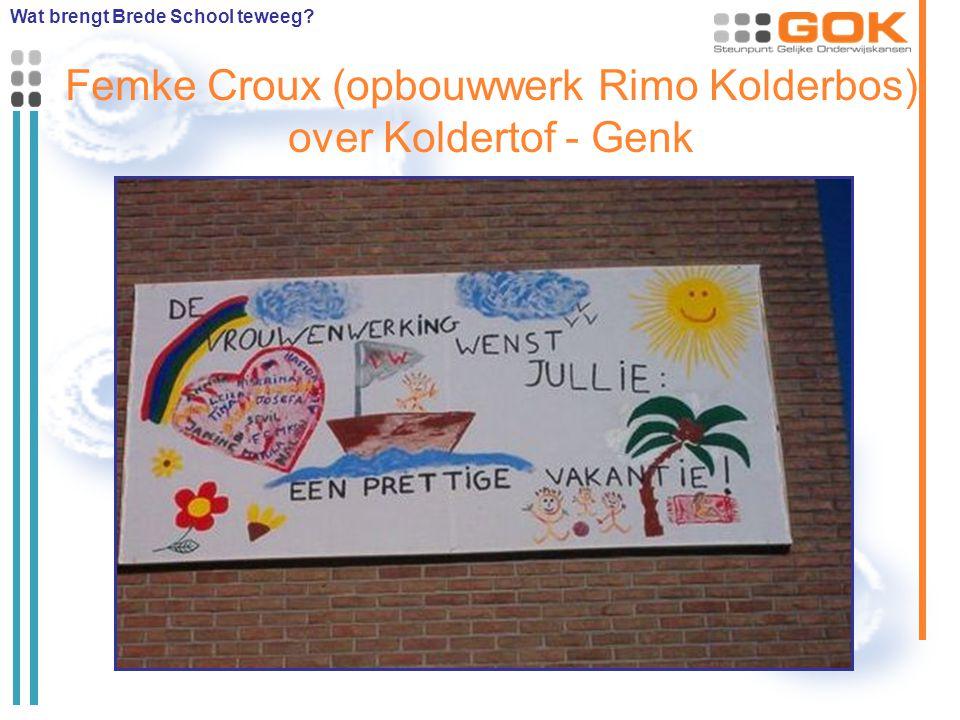 Femke Croux (opbouwwerk Rimo Kolderbos) over Koldertof - Genk Wat brengt Brede School teweeg?