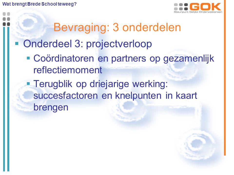 Bevraging: 3 onderdelen  Onderdeel 3: projectverloop  Coördinatoren en partners op gezamenlijk reflectiemoment  Terugblik op driejarige werking: su