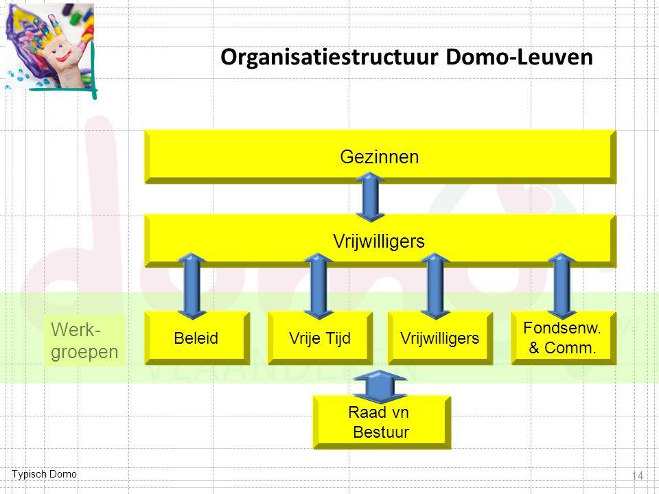 Typisch Domo Werk- groepen 14 Organisatiestructuur Domo-Leuven Vrijwilligers Raad vn Bestuur Vrije Tijd Fondsenw. & Comm. Beleid Vrijwilligers Gezinne