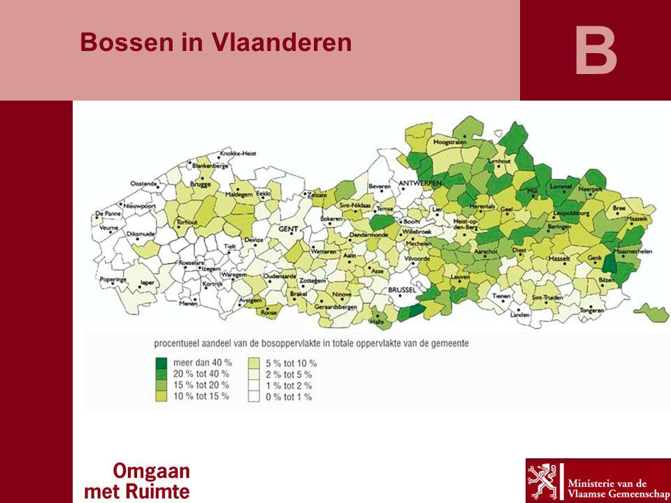 B Bossen in Vlaanderen