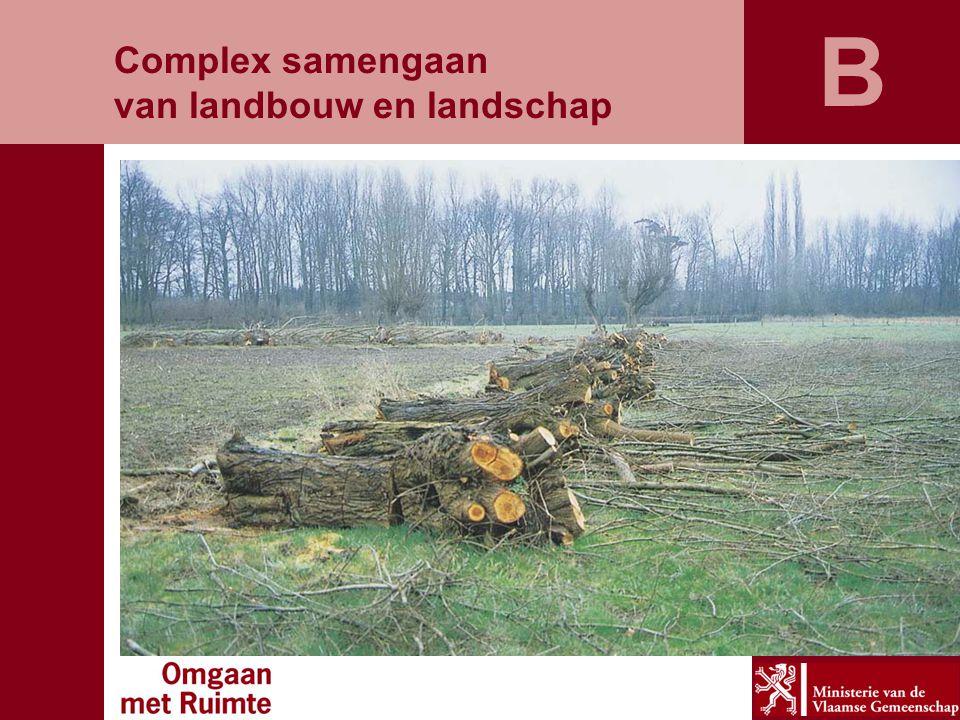 Complex samengaan van landbouw en landschap B