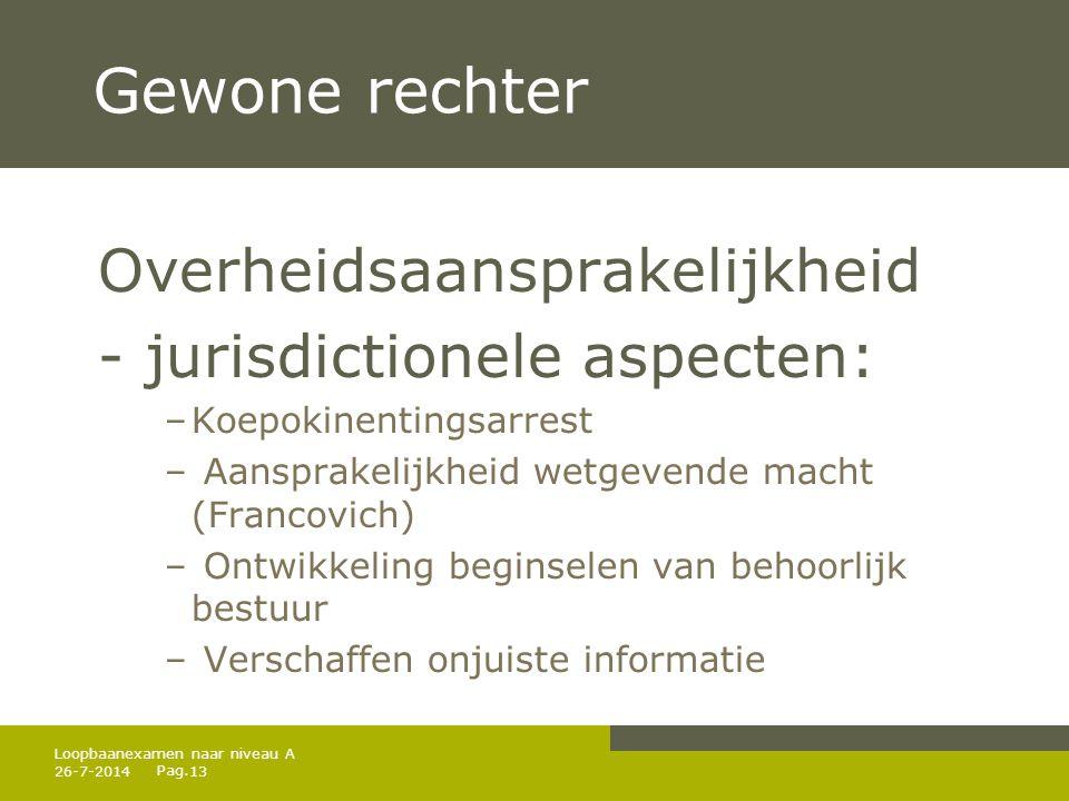 Pag. Gewone rechter Overheidsaansprakelijkheid - jurisdictionele aspecten: –Koepokinentingsarrest – Aansprakelijkheid wetgevende macht (Francovich) –