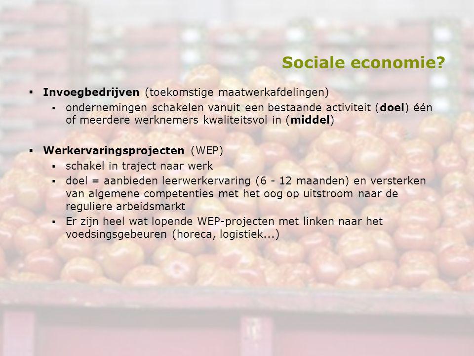 Sociale economie?  Invoegbedrijven (toekomstige maatwerkafdelingen) ▪ondernemingen schakelen vanuit een bestaande activiteit (doel) één of meerdere w