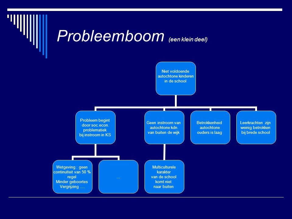Probleemboom (een klein deel) Niet voldoende autochtone kinderen in de school Probleem begint door soc.econ.