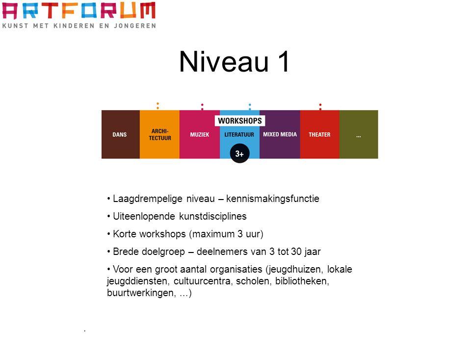 Niveau 1 Laagdrempelige niveau – kennismakingsfunctie Uiteenlopende kunstdisciplines Korte workshops (maximum 3 uur) Brede doelgroep – deelnemers van
