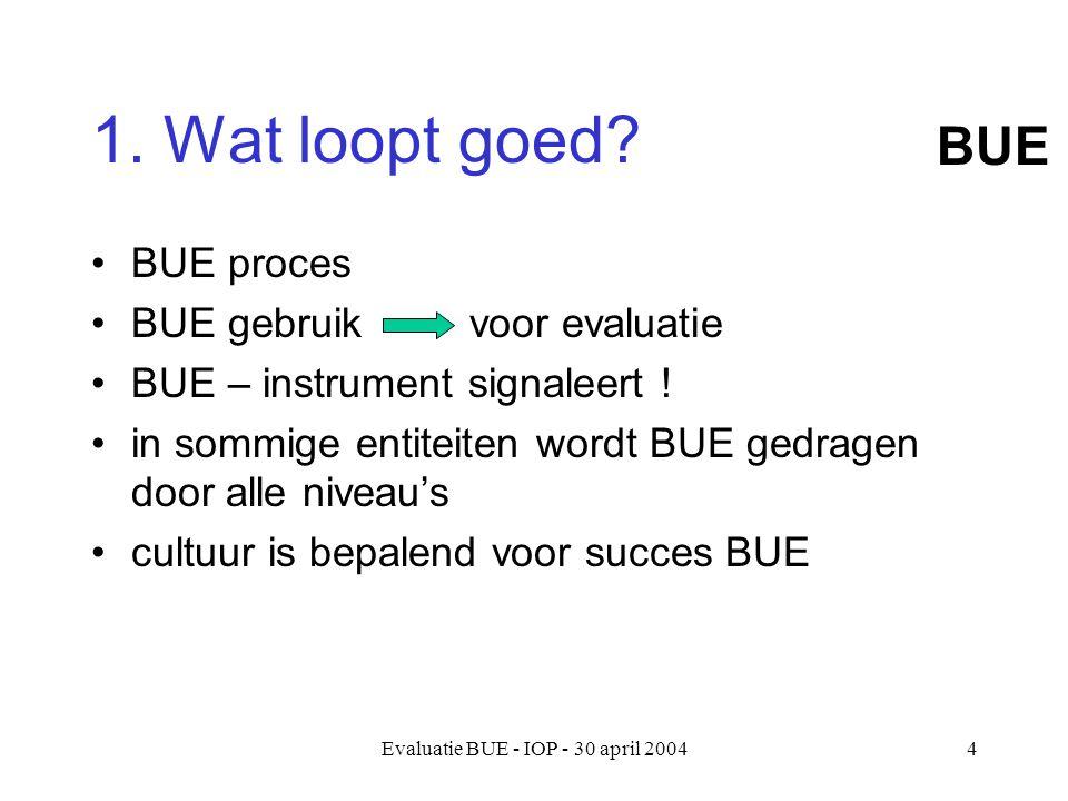 Evaluatie BUE - IOP - 30 april 20044 1. Wat loopt goed.