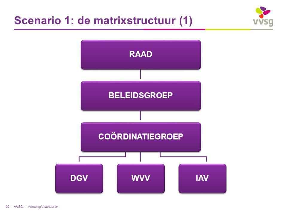 VVSG - Scenario 1: de matrixstructuur (1) Vorming Vlaanderen32 - RAAD BELEIDSGROEP COÖRDINATIEGROEP DGV WVV IAV