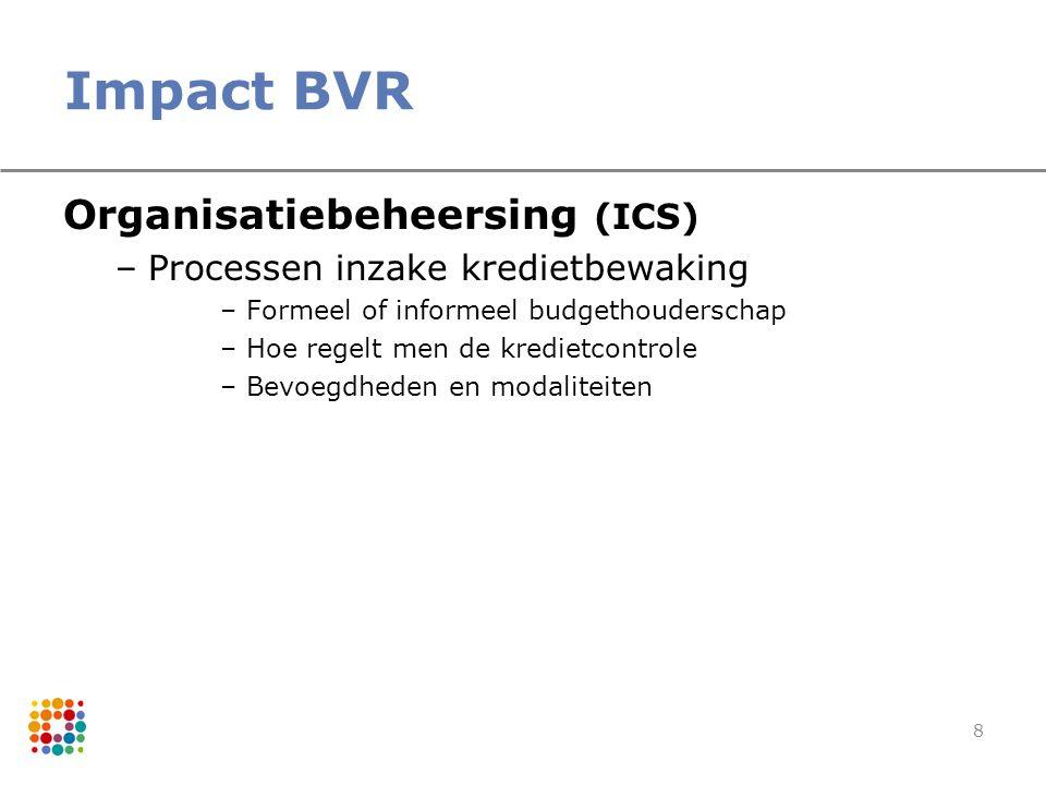 8 Impact BVR Organisatiebeheersing (ICS) –Processen inzake kredietbewaking –Formeel of informeel budgethouderschap –Hoe regelt men de kredietcontrole