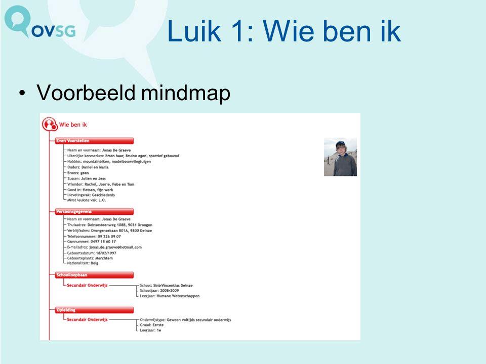 Luik 1: Wie ben ik Voorbeeld mindmap