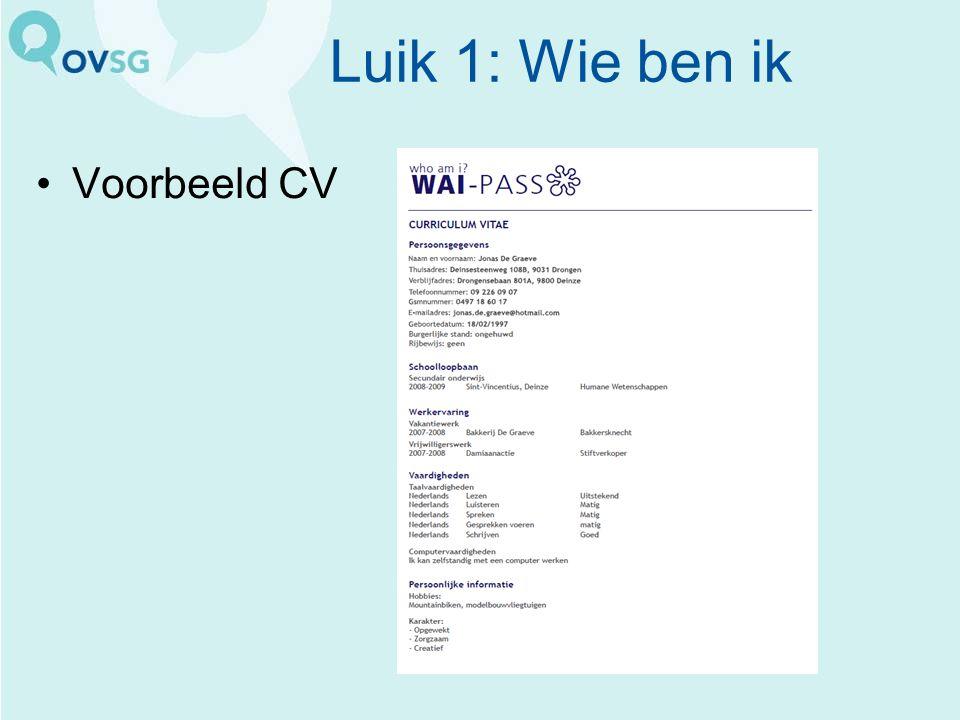 Luik 1: Wie ben ik Voorbeeld CV