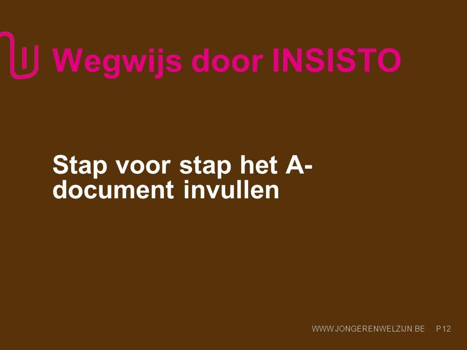 WWW.JONGERENWELZIJN.BE P Wegwijs door INSISTO Stap voor stap het A- document invullen 12