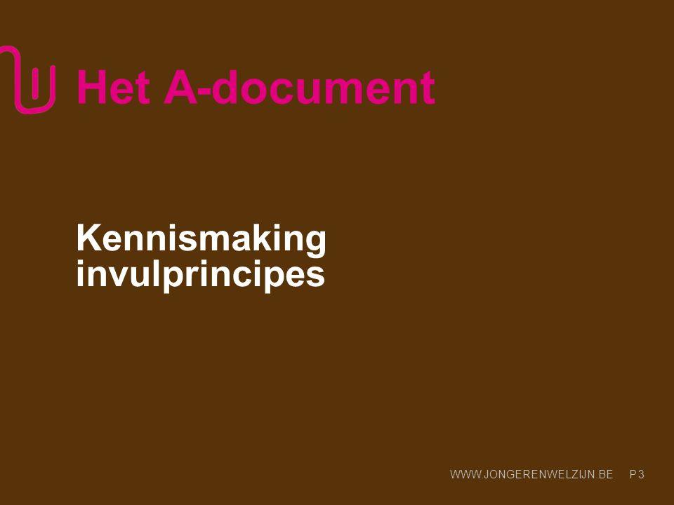 WWW.JONGERENWELZIJN.BE P Het A-document Kennismaking invulprincipes 3