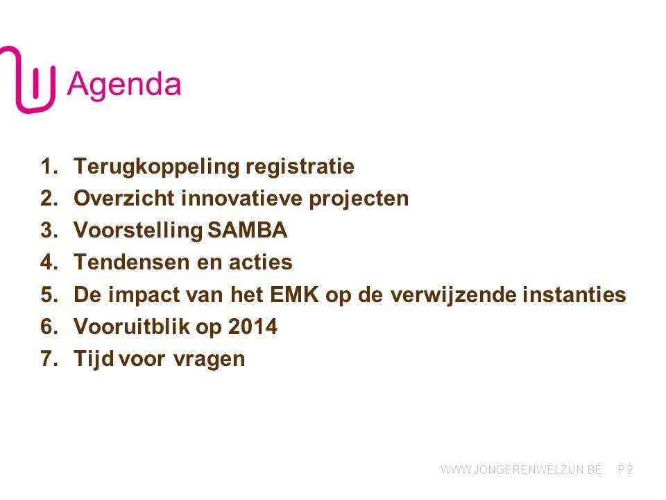 WWW.JONGERENWELZIJN.BE P 2 Agenda 1.Terugkoppeling registratie 2.Overzicht innovatieve projecten 3.Voorstelling SAMBA 4.Tendensen en acties 5.De impact van het EMK op de verwijzende instanties 6.Vooruitblik op 2014 7.Tijd voor vragen