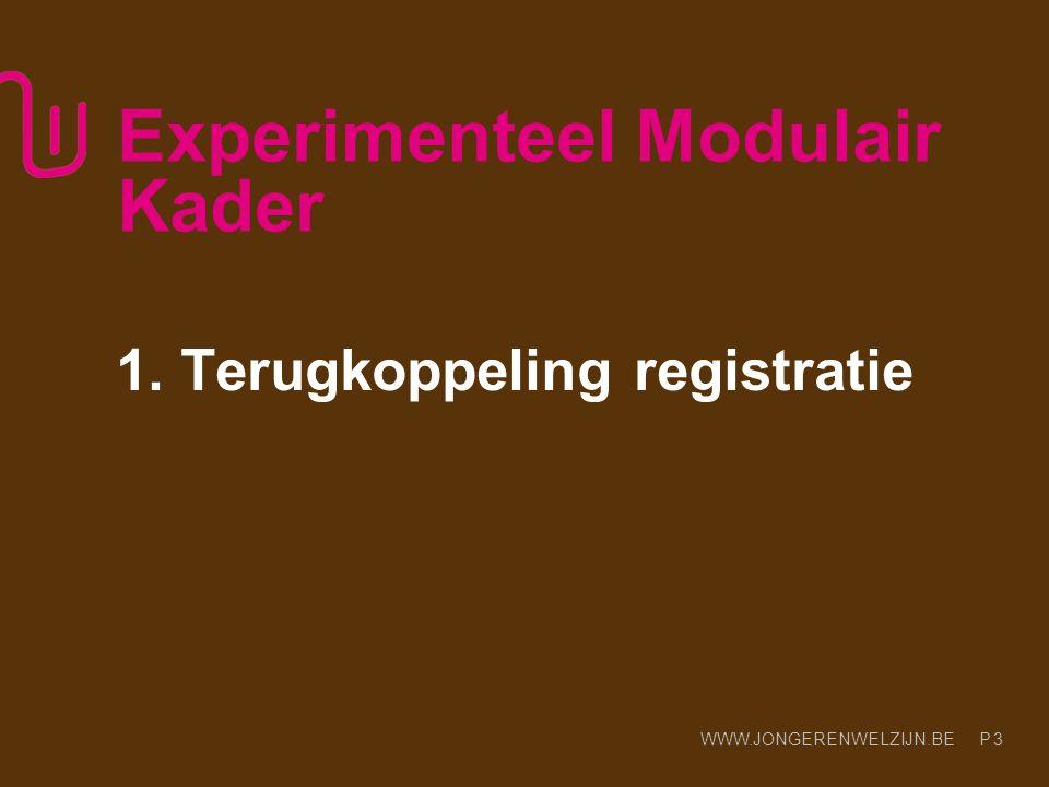 WWW.JONGERENWELZIJN.BE P Experimenteel Modulair Kader 1. Terugkoppeling registratie 3