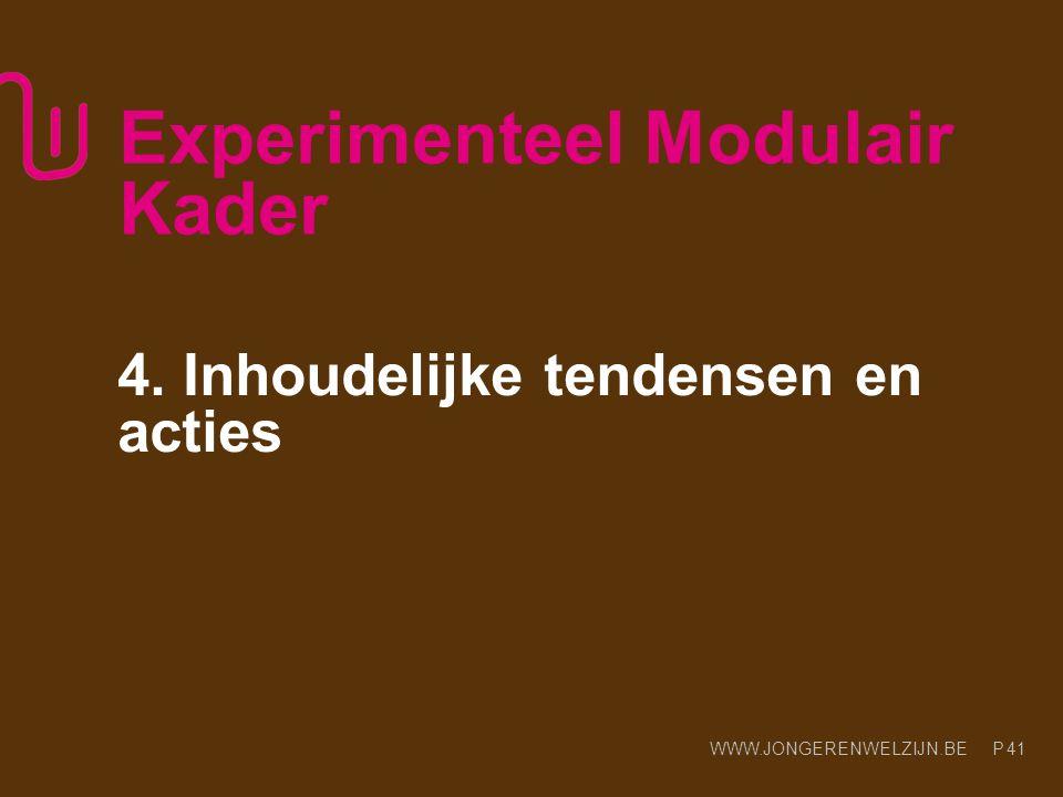 WWW.JONGERENWELZIJN.BE P Experimenteel Modulair Kader 4. Inhoudelijke tendensen en acties 41