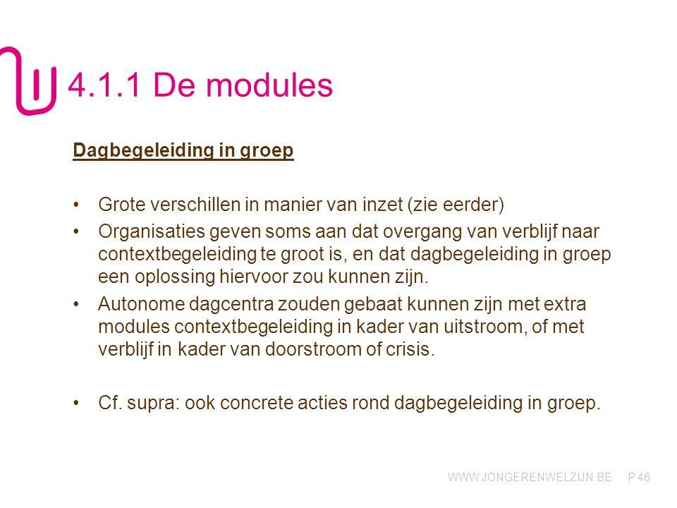 WWW.JONGERENWELZIJN.BE P 46 4.1.1 De modules Dagbegeleiding in groep Grote verschillen in manier van inzet (zie eerder) Organisaties geven soms aan da