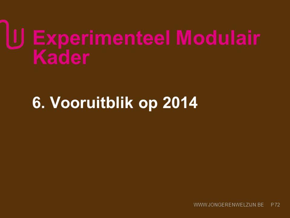 WWW.JONGERENWELZIJN.BE P Experimenteel Modulair Kader 6. Vooruitblik op 2014 72