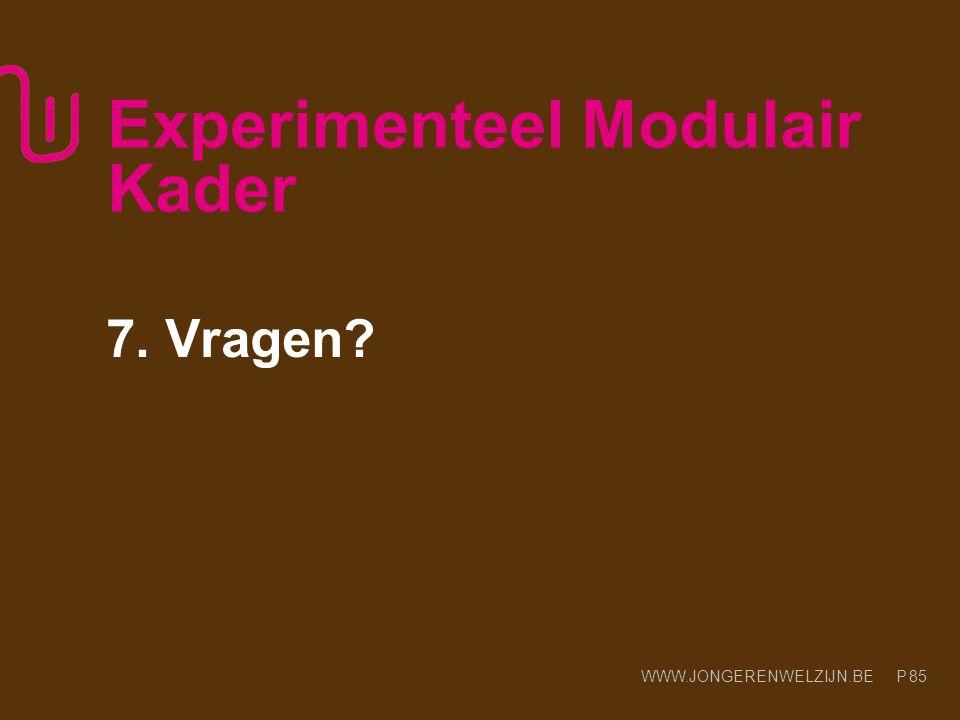 WWW.JONGERENWELZIJN.BE P Experimenteel Modulair Kader 7. Vragen? 85