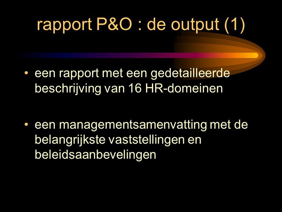 rapport P&O : de output (1) een rapport met een gedetailleerde beschrijving van 16 HR-domeinen een managementsamenvatting met de belangrijkste vastste