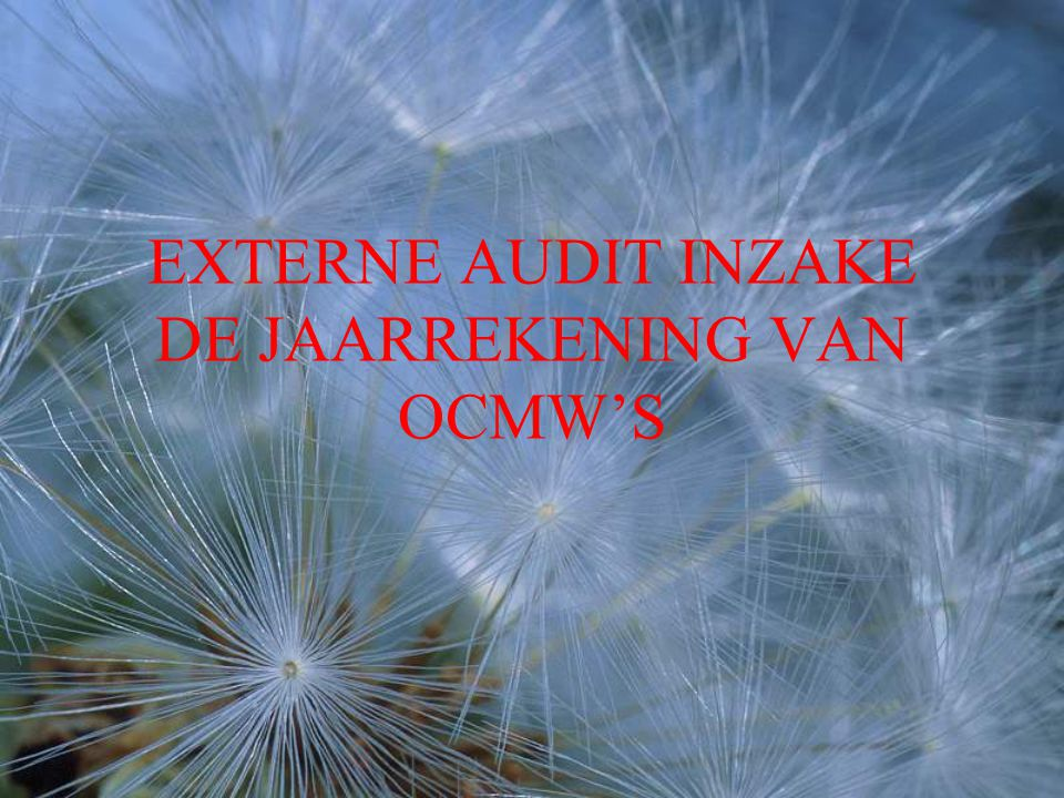EXTERNE AUDIT INZAKE DE JAARREKENING VAN OCMW'S