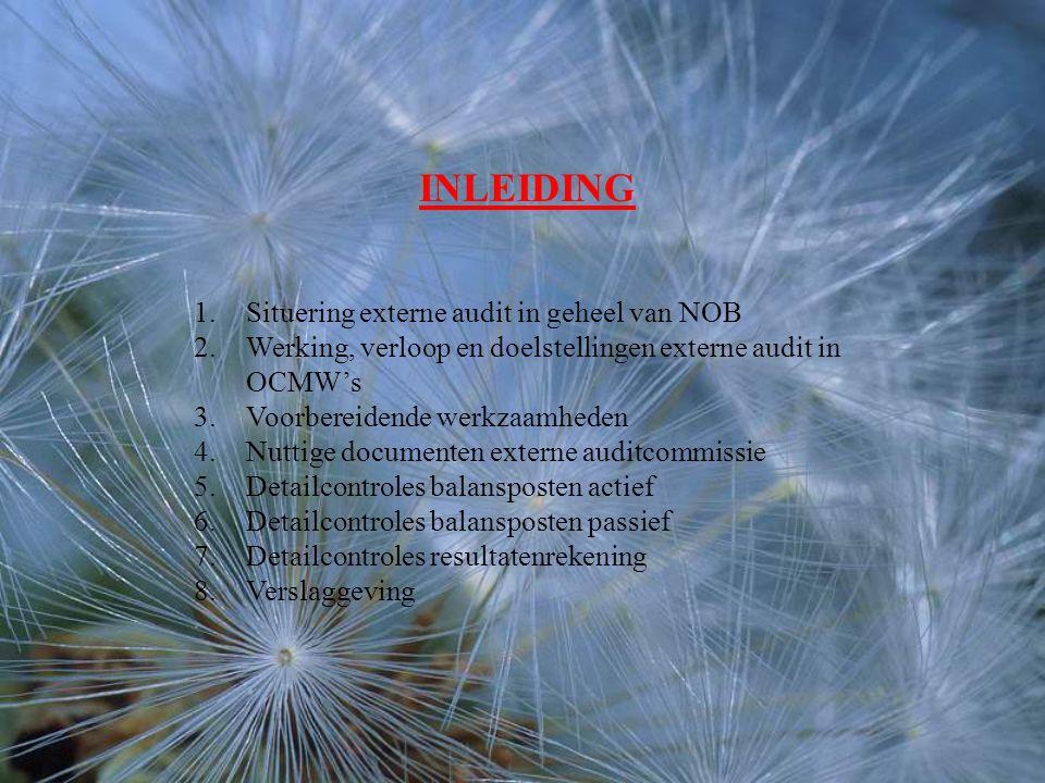 INLEIDING 1.Situering externe audit in geheel van NOB 2.Werking, verloop en doelstellingen externe audit in OCMW's 3.Voorbereidende werkzaamheden 4.Nuttige documenten externe auditcommissie 5.Detailcontroles balansposten actief 6.Detailcontroles balansposten passief 7.Detailcontroles resultatenrekening 8.Verslaggeving