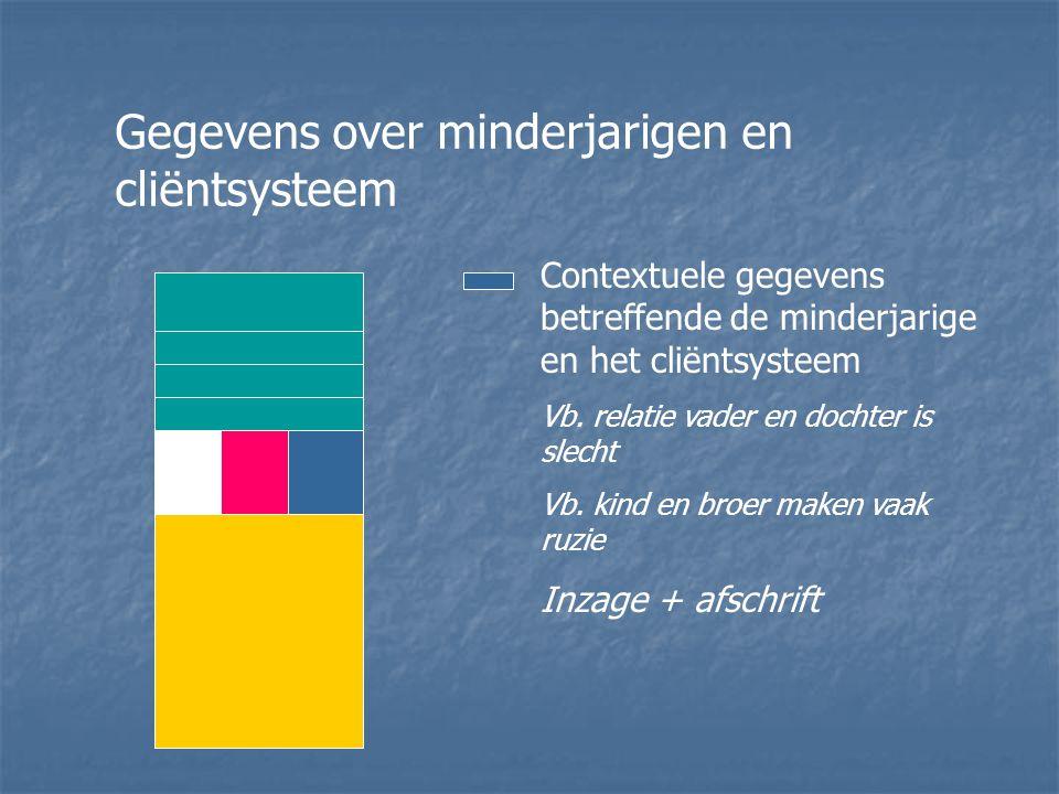 Gegevens over minderjarigen en cliëntsysteem Contextuele gegevens betreffende de minderjarige en het cliëntsysteem Vb.