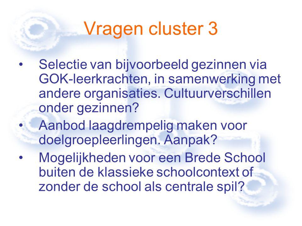 Vragen cluster 3 Selectie van bijvoorbeeld gezinnen via GOK-leerkrachten, in samenwerking met andere organisaties.
