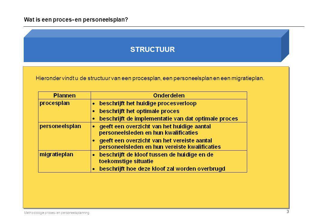 3 Methodologie proces- en personeelsplanning STRUCTUUR Wat is een proces- en personeelsplan? Hieronder vindt u de structuur van een procesplan, een pe