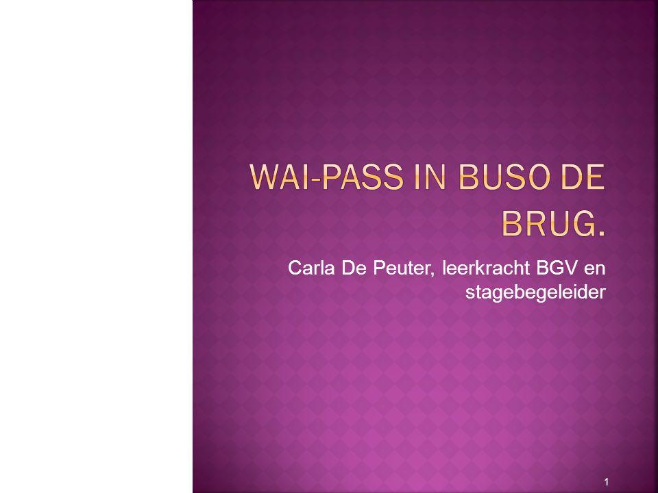 Carla De Peuter, leerkracht BGV en stagebegeleider 1