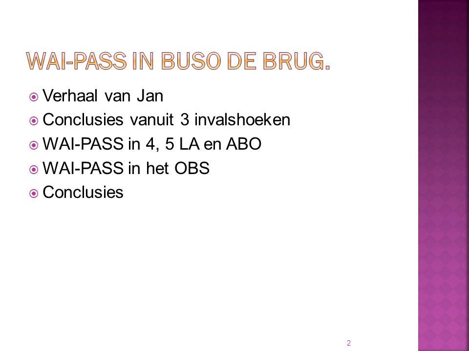  Verhaal van Jan  Conclusies vanuit 3 invalshoeken  WAI-PASS in 4, 5 LA en ABO  WAI-PASS in het OBS  Conclusies 2