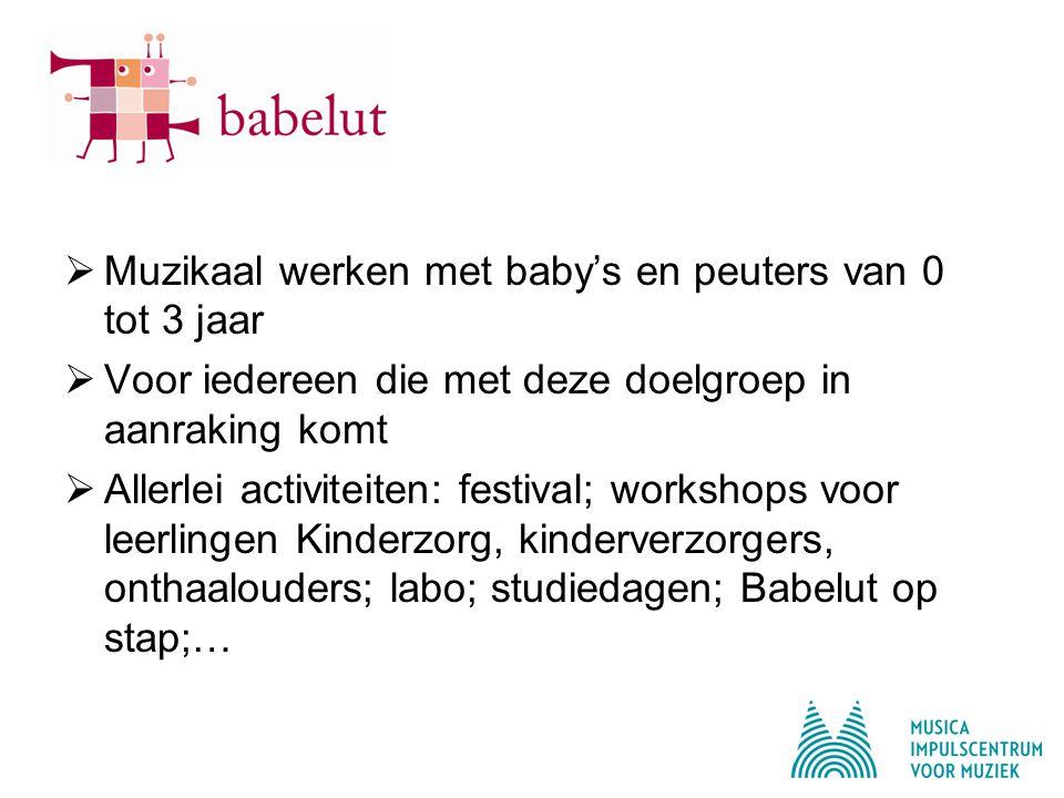 Muzikaal werken met baby's en peuters van 0 tot 3 jaar  Voor iedereen die met deze doelgroep in aanraking komt  Allerlei activiteiten: festival; workshops voor leerlingen Kinderzorg, kinderverzorgers, onthaalouders; labo; studiedagen; Babelut op stap;…