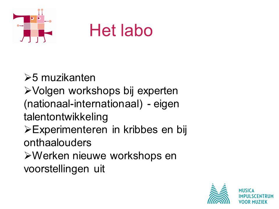 Het labo  5 muzikanten  Volgen workshops bij experten (nationaal-internationaal) - eigen talentontwikkeling  Experimenteren in kribbes en bij onthaalouders  Werken nieuwe workshops en voorstellingen uit