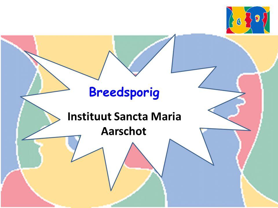 Breedsporig Instituut Sancta Maria Aarschot