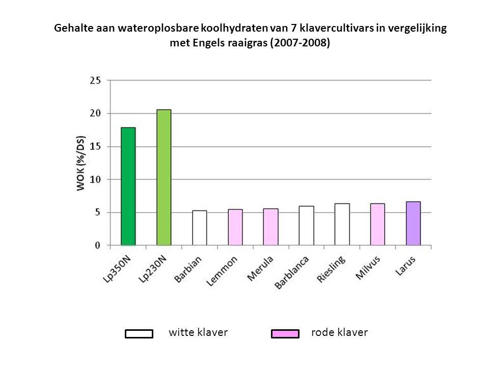 witte klaverrode klaver Gehalte aan wateroplosbare koolhydraten van 7 klavercultivars in vergelijking met Engels raaigras (2007-2008)