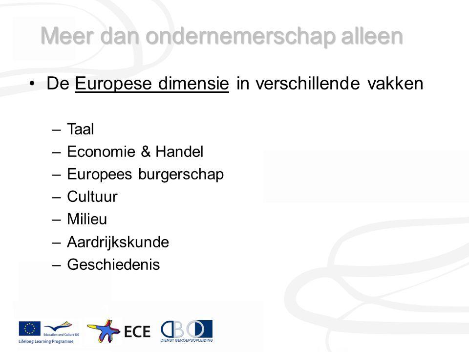 Meer dan ondernemerschap alleen De Europese dimensie in verschillende vakken –Taal –Economie & Handel –Europees burgerschap –Cultuur –Milieu –Aardrijkskunde –Geschiedenis