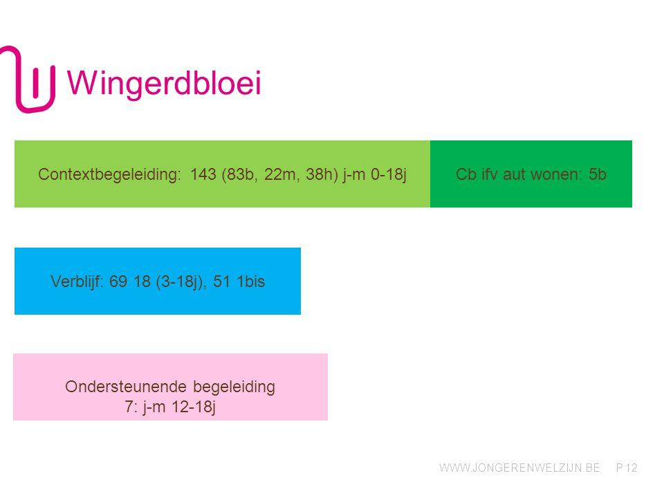 WWW.JONGERENWELZIJN.BE P Wingerdbloei 12 Contextbegeleiding: 143 (83b, 22m, 38h) j-m 0-18j Cb ifv aut wonen: 5b Verblijf: 69 18 (3-18j), 51 1bis Onder