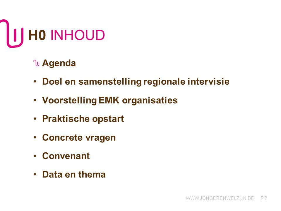 3 H1 Regionale intervisie Doel en samenstelling