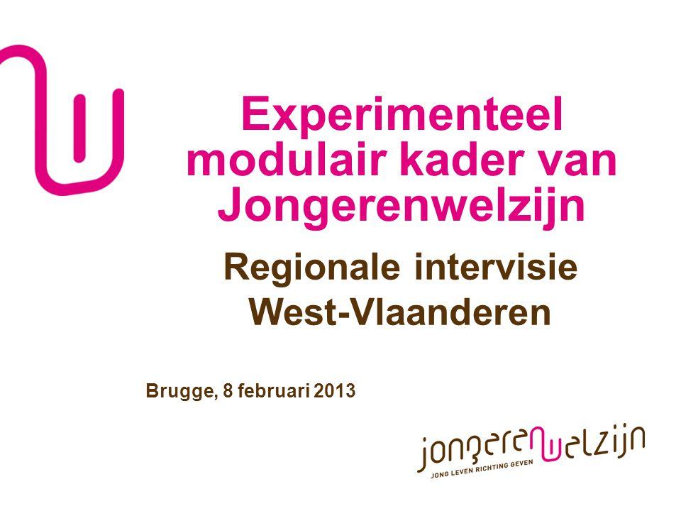Experimenteel modulair kader van Jongerenwelzijn Regionale intervisie West-Vlaanderen Brugge, 8 februari 2013