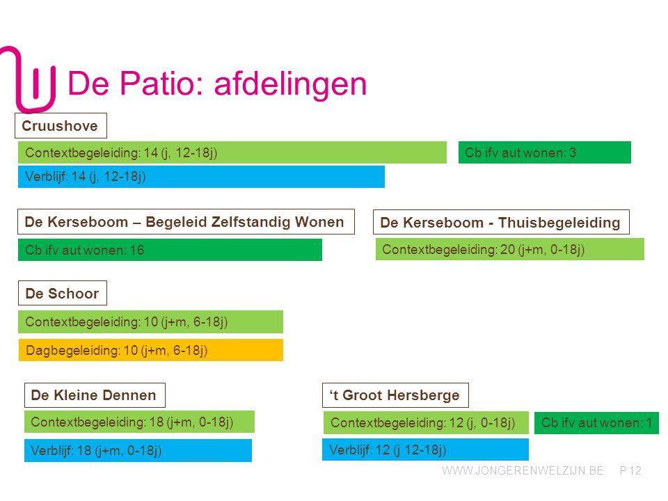 WWW.JONGERENWELZIJN.BE P De Patio: afdelingen 12 Contextbegeleiding: 14 (j, 12-18j)Cb ifv aut wonen: 3 Dagbegeleiding: 10 (j+m, 6-18j) Verblijf: 14 (j, 12-18j) Cruushove De Kerseboom - Thuisbegeleiding Contextbegeleiding: 20 (j+m, 0-18j) Verblijf: 18 (j+m, 0-18j) De Kleine Dennen De Kerseboom – Begeleid Zelfstandig Wonen Cb ifv aut wonen: 16 De Schoor Contextbegeleiding: 10 (j+m, 6-18j) Contextbegeleiding: 18 (j+m, 0-18j) 't Groot Hersberge Verblijf: 12 (j 12-18j) Contextbegeleiding: 12 (j, 0-18j) Cb ifv aut wonen: 1