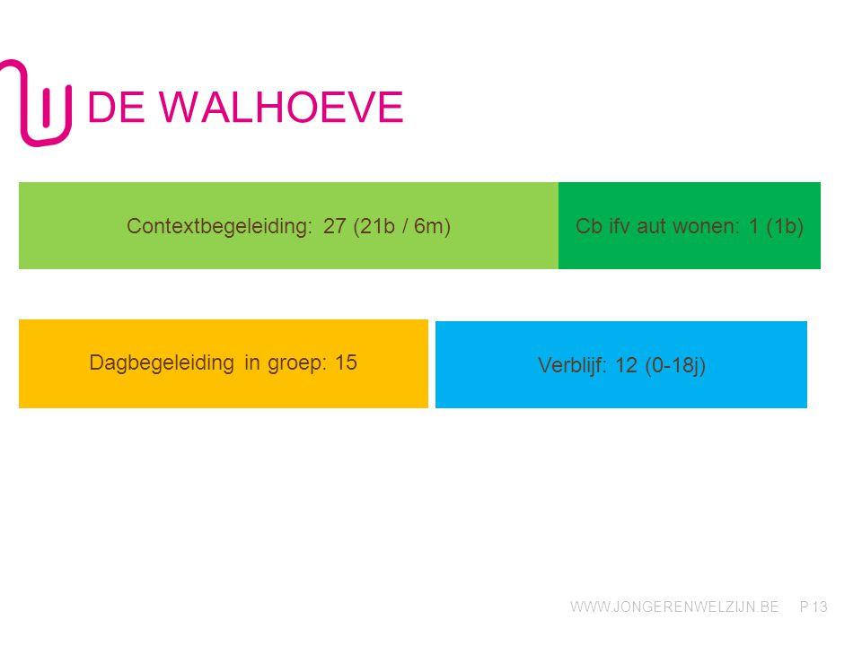 WWW.JONGERENWELZIJN.BE P DE WALHOEVE 13 Contextbegeleiding: 27 (21b / 6m) Cb ifv aut wonen: 1 (1b) Dagbegeleiding in groep: 15 Verblijf: 12 (0-18j)