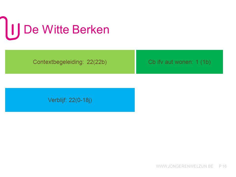 WWW.JONGERENWELZIJN.BE P De Witte Berken 16 Contextbegeleiding: 22(22b) Cb ifv aut wonen: 1 (1b) Verblijf: 22(0-18j)